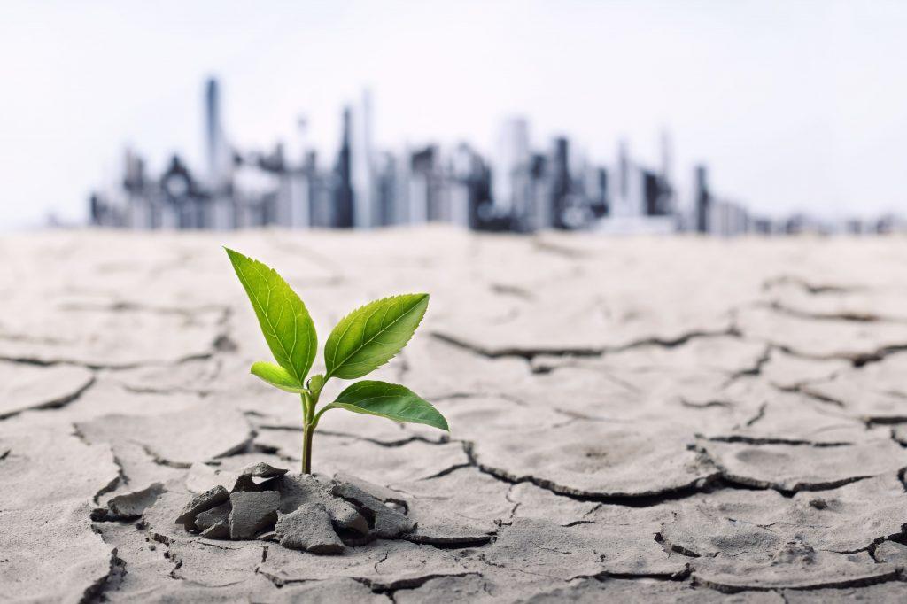 Soluzioni al cambiamento climatico